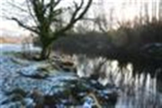 Wintry scene along the River Usk
